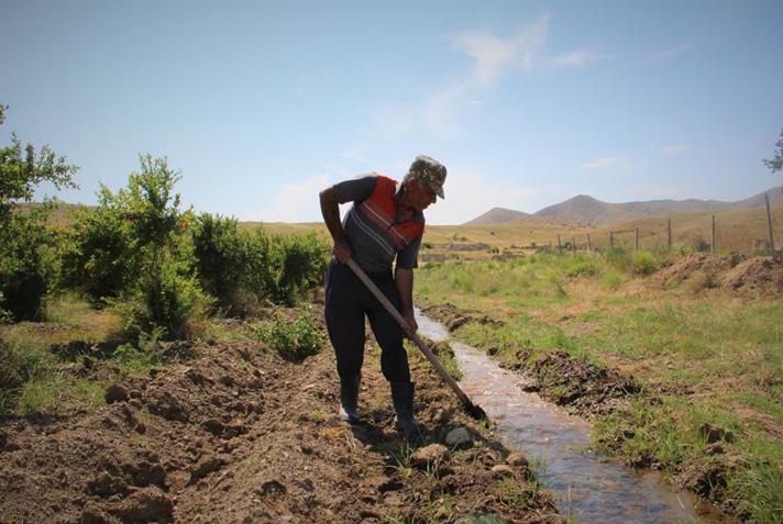 man-digging